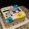 Fun Paint Ball Cake Chocolate Chip Fudge Cake Vanilla ButterCream Filling/Frosting