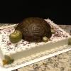 Grooms Cake Turtle (Serves 40) Butter Almond Pound Cake